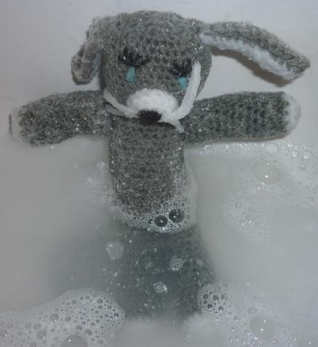 [grey rabbit having a bath]